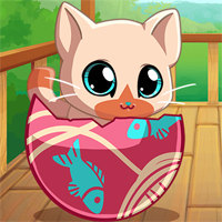 Free online flash games - My Pocket Pets Kitty Cat game - chicksgames