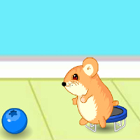 Free online flash games - Hamster Lost in Food 3 game - chicksgames